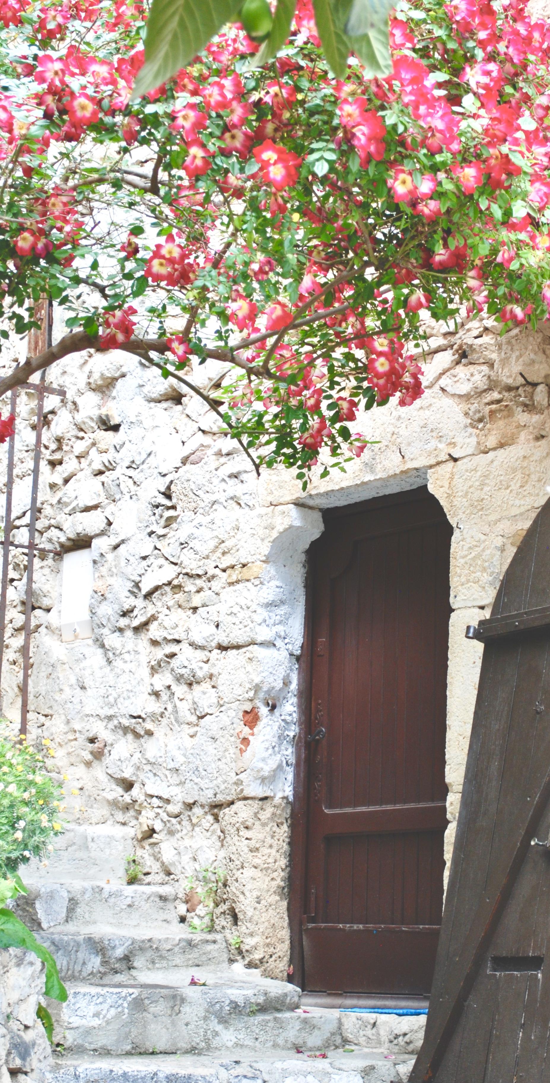 Eze Village Flowers